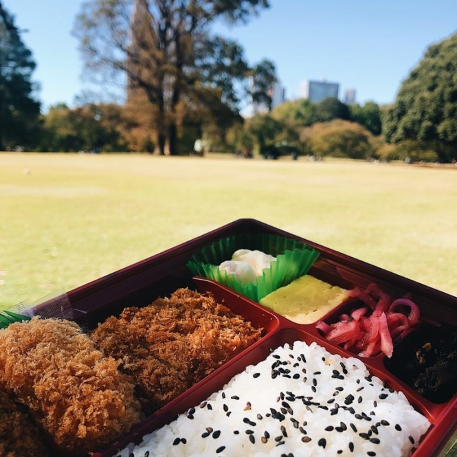 bento Shinjuku Gyoen National Garden